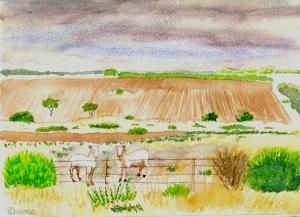 Moorowie view north 1